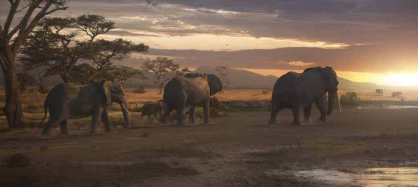 A winning charity Christmas campaign: WWF's JustLikeUs